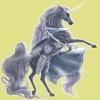 holita3 - Horzer criador de caballos