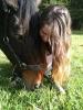 romiamaloscaballos - Horzer criador de caballos
