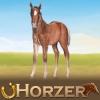 Dreamzer - Horzer criador de caballos