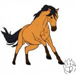 Stallion Drawing - Mustang
