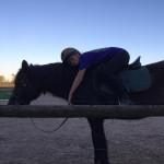 Jack of Hearts - Mustang Macho (8 años)